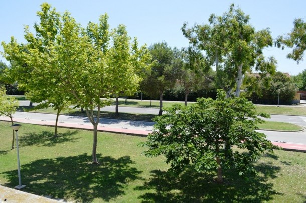 Location vacances Sant Pere Pescador -  Appartement - 3 personnes - Barbecue - Photo N° 1