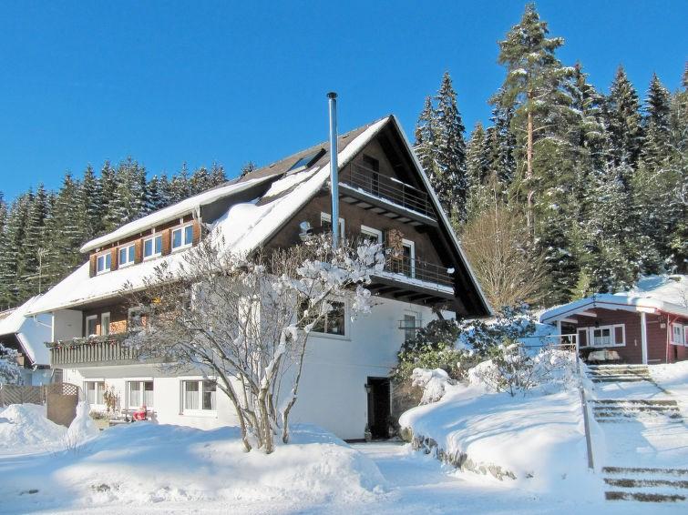 Location vacances Hinterzarten -  Appartement - 4 personnes -  - Photo N° 1