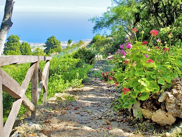 Location vacances Icod de los Vinos -  Maison - 4 personnes -  - Photo N° 1