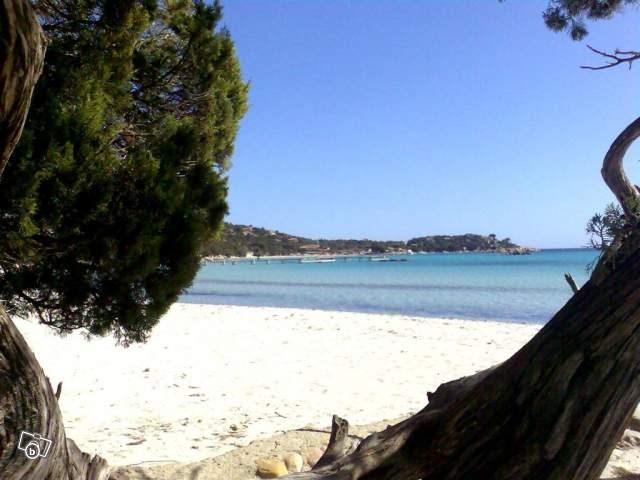 Location vacances Porto-Vecchio -  Maison - 4 personnes -  - Photo N° 1