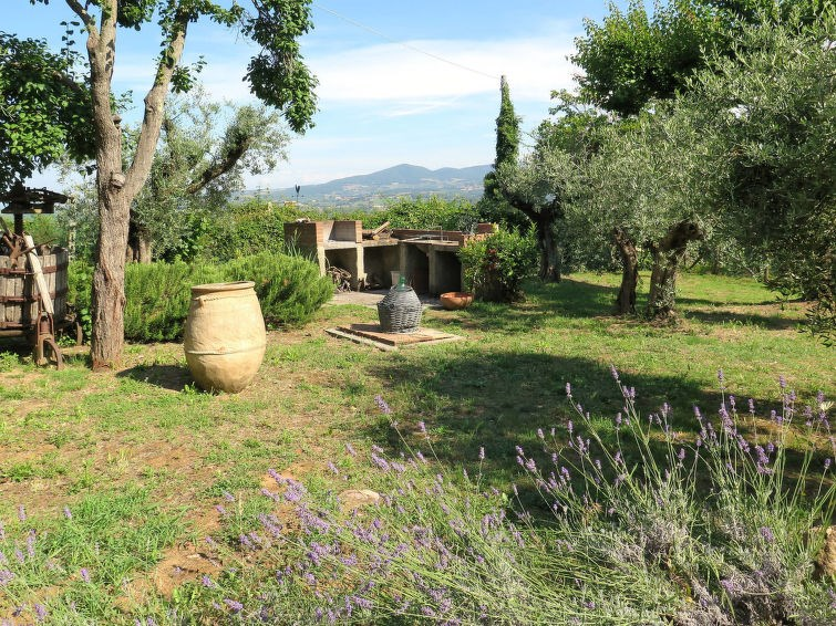 Location vacances Montescudaio -  Maison - 4 personnes -  - Photo N° 1