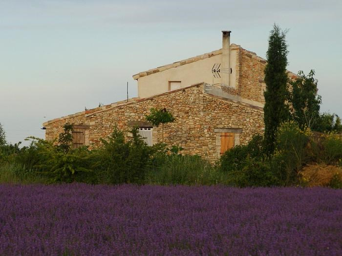 Location vacances Valensole -  Maison - 3 personnes - Barbecue - Photo N° 1