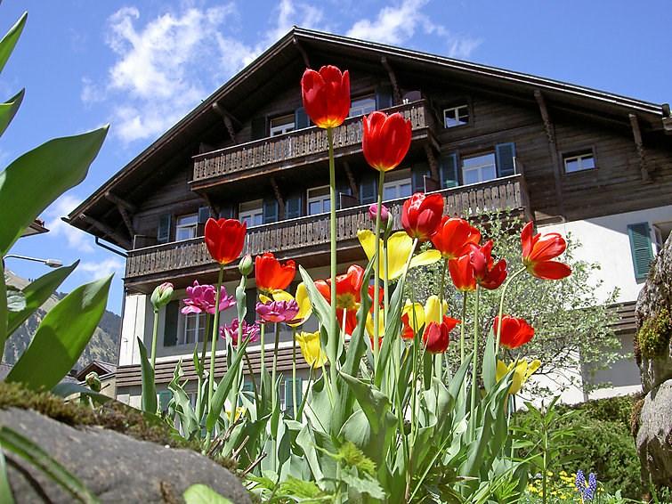 Location vacances Lenk -  Appartement - 6 personnes -  - Photo N° 1