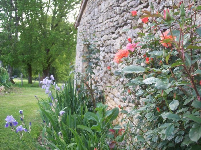 Location vacances Savignac-de-Miremont -  Maison - 6 personnes - Barbecue - Photo N° 1