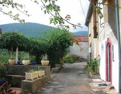 Location vacances Saint-Amans-Soult -  Maison - 6 personnes - Barbecue - Photo N° 1