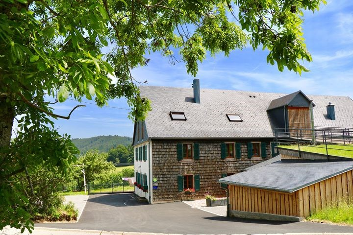 Holiday rentals Orbey - Cottage - 2 persons - BBQ - Photo N° 1