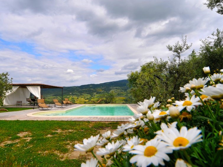 Location vacances Castel del Piano -  Maison - 6 personnes -  - Photo N° 1