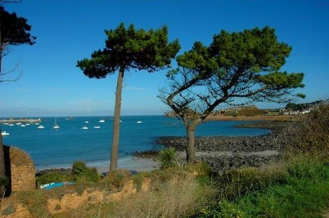 Location vacances Plougasnou -  Gite - 6 personnes - Barbecue - Photo N° 1
