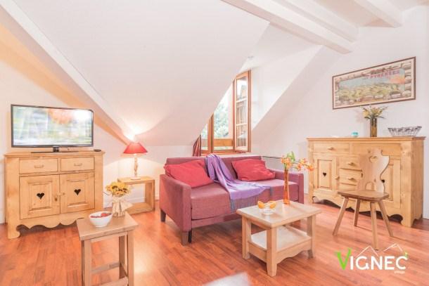 Location vacances Vignec -  Appartement - 6 personnes - Télévision - Photo N° 1
