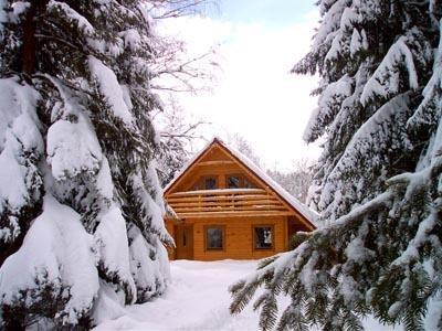Location vacances Granges-sur-Vologne -  Maison - 8 personnes - Barbecue - Photo N° 1
