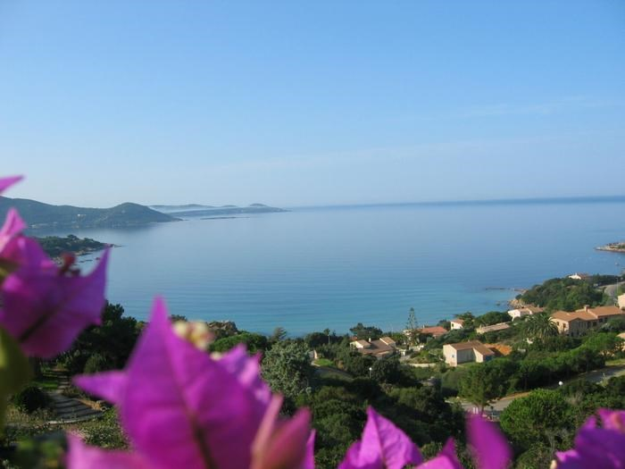 Holiday rentals Pietrosella - House - 7 persons - BBQ - Photo N° 1