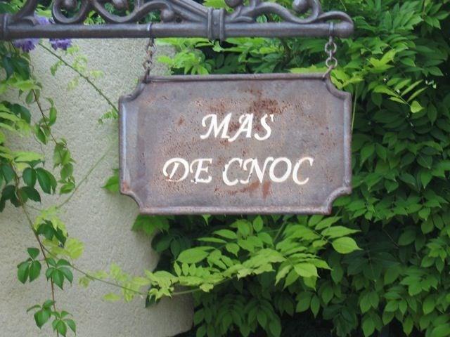 Mas de Cnoc est une ravissante maison de vacances située dans la petite ville de Malaucène, à une petite distance à p...