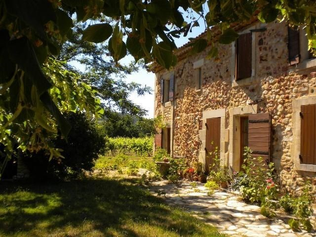 Gîtes de France - Les vignes.