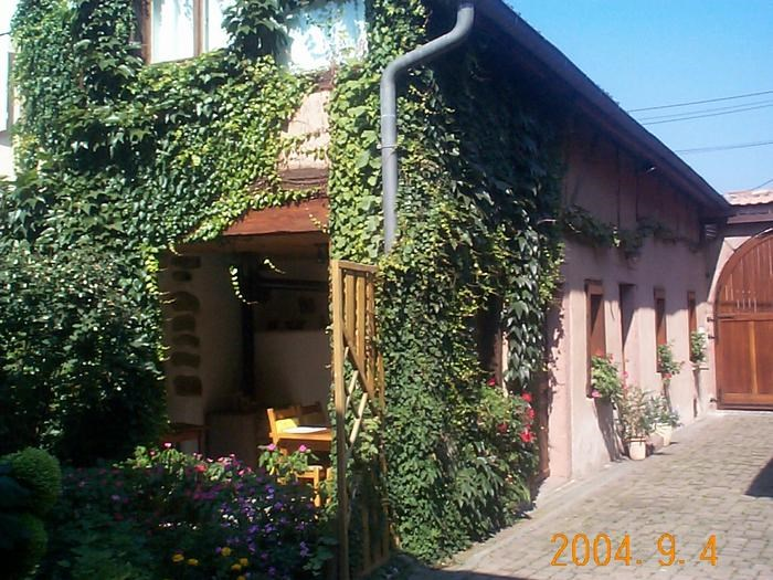 Holiday rentals Scherwiller - House - 5 persons - BBQ - Photo N° 1