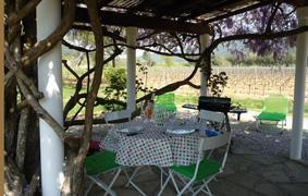 Location vacances La Môle -  Maison - 2 personnes - Barbecue - Photo N° 1