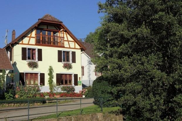 gîte rural tout confort au coeur de l'Alsace - Maisonsgoutte