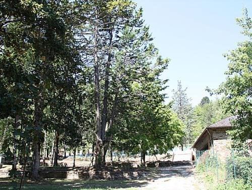 Camping L'Ecrin Vert