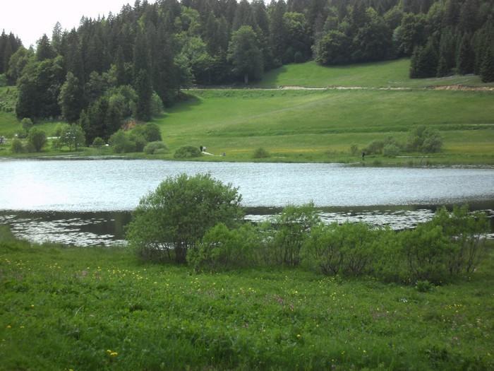 photo du lac près du chalet en été (pour pécheurs)