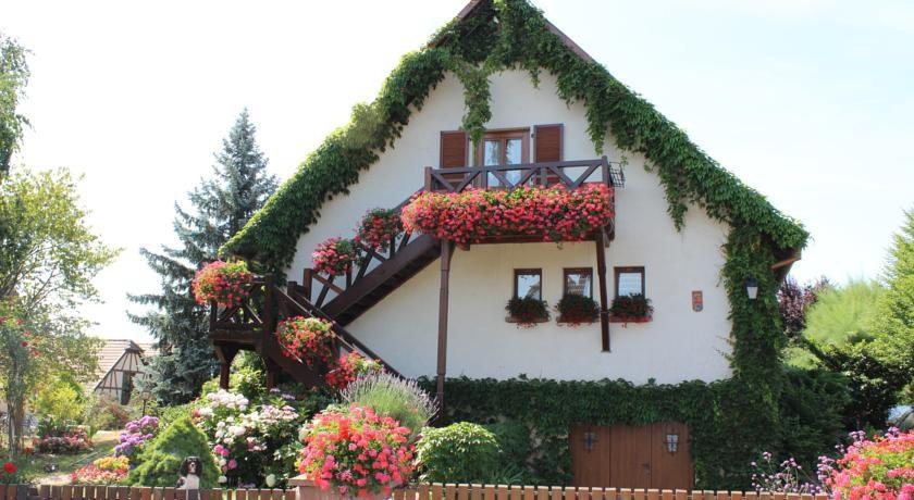 Location Appartement Centre Alsace