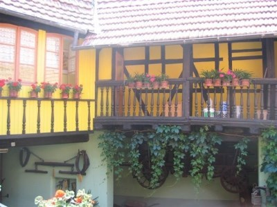 Morada Alsacia viñedo Pfaffenheim - Pfaffenheim