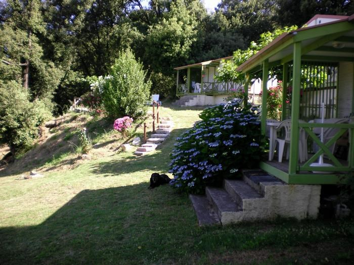 Location vacances Casalabriva -  Maison - 5 personnes - Barbecue - Photo N° 1