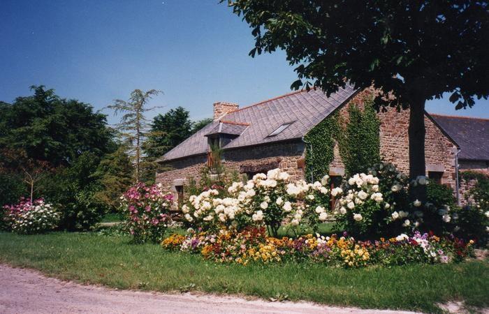 Location vacances Saint-Georges-de-Gréhaigne -  Maison - 12 personnes - Barbecue - Photo N° 1