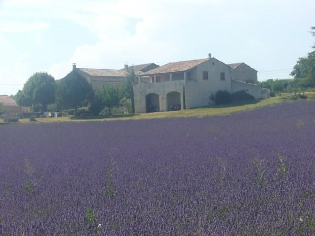 maison en drome provençale - Taulignan
