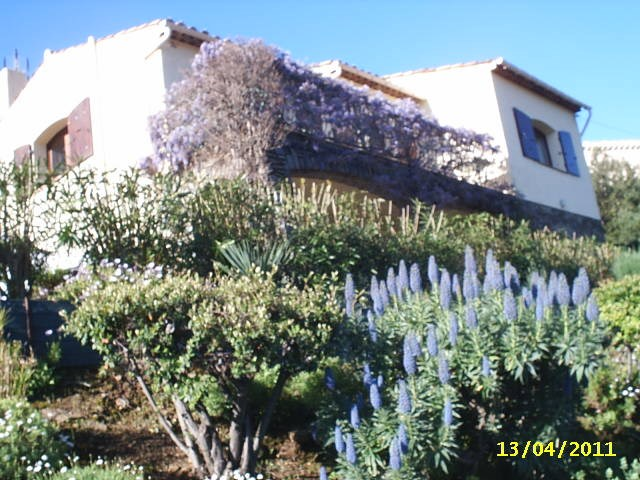 Location vacances Cavalaire-sur-Mer -  Appartement - 5 personnes - Barbecue - Photo N° 1