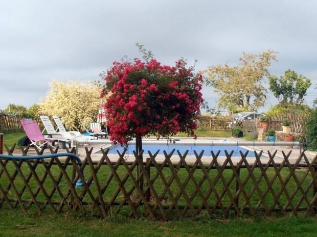 Location vacances Saint-Priest-Ligoure -  Gite - 20 personnes - Barbecue - Photo N° 1