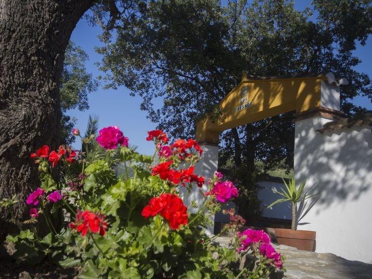Maison pour 6 personnes à Sierra de Cádiz / Ubrique