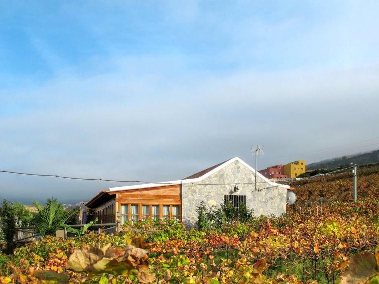 Location vacances La Orotava -  Maison - 4 personnes -  - Photo N° 1