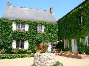 Location vacances Saint-Aubin-de-Luigné -  Gite - 4 personnes - Barbecue - Photo N° 1