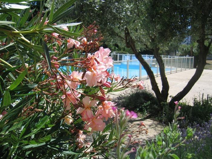 Studio pour 3 pers. avec piscine, La Rochelle