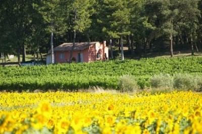 Location d'un gîte indépendant en Provence - Massif d'Uchaux - Bollène