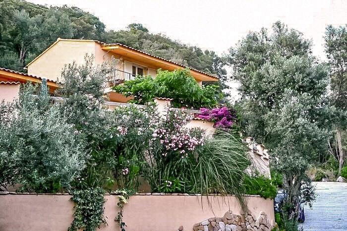 """Maison """"Les oliviers sauvages"""""""