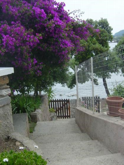Location vacances Sari-Solenzara -  Maison - 6 personnes - Barbecue - Photo N° 1