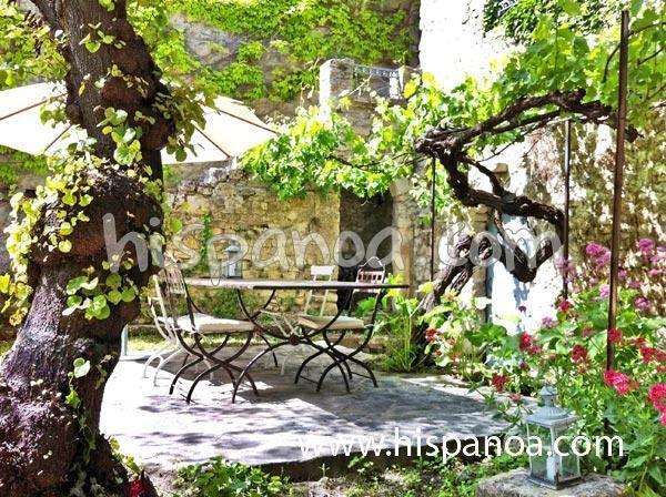 Location maison dans le Vaucluse - Maison à Vaison la Romaine | 58