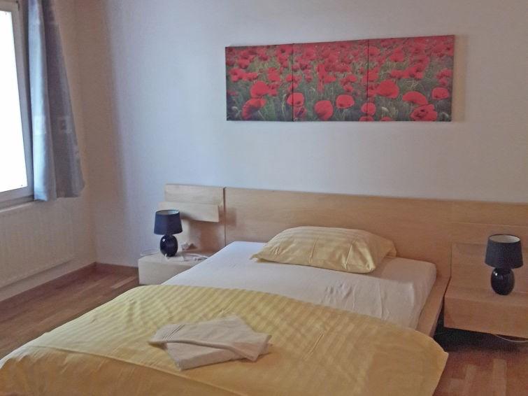 Appartement pour 3 personnes à Wengen