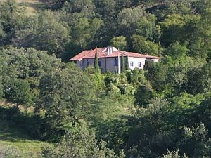 Holiday rentals Cazaux - Cottage - 4 persons - BBQ - Photo N° 1