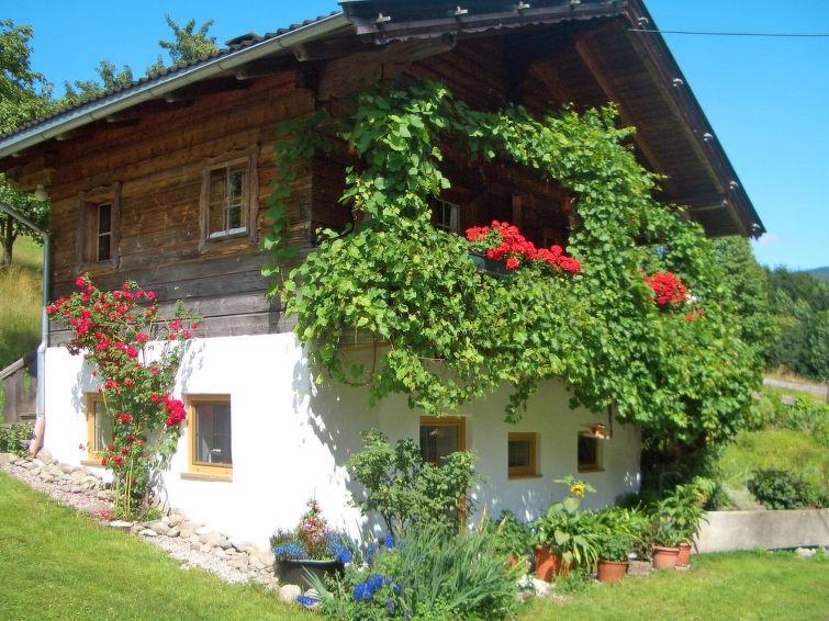 Studio pour 3 personnes à Alpbach