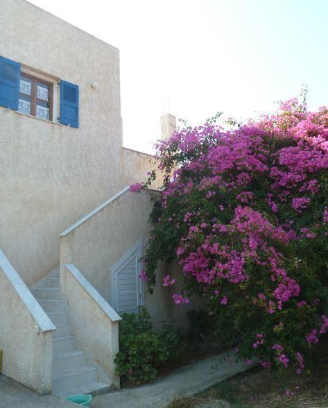 Affitti per le vacanze Siro-Ermopoli - Appartamento - 4 persone - Barbecue - Foto N° 1