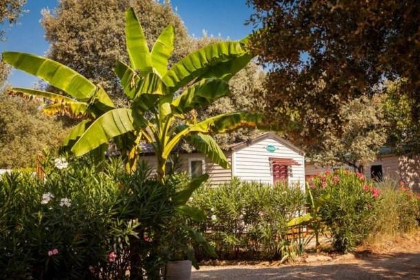 Location vacances Boisseron -  Maison - 4 personnes - Terrasse - Photo N° 1