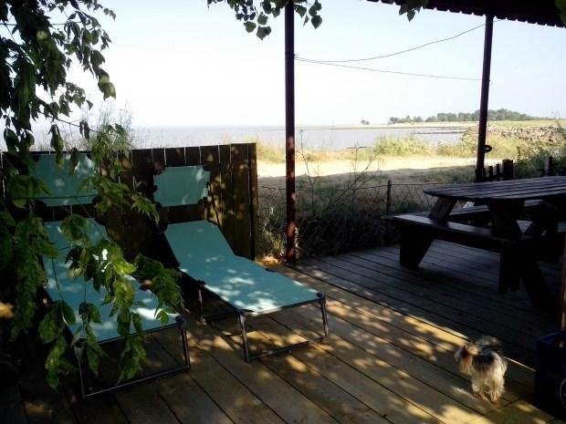 Location vacances Saint-Vivien-de-Médoc -  Gite - 8 personnes - Barbecue - Photo N° 1