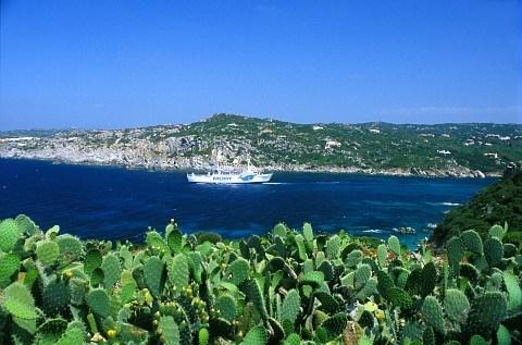 Les pieds dans les eaux cristallines de la Méditerrannée...
