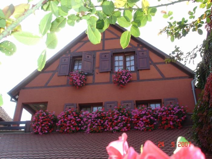 Holiday rentals Bergheim - Apartment - 3 persons - BBQ - Photo N° 1
