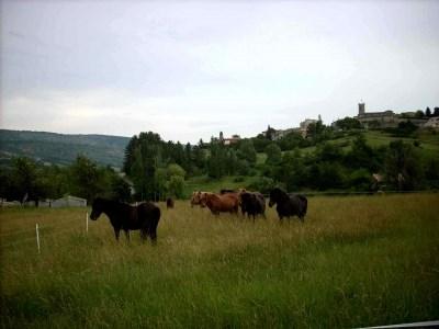 Location vacances Revest-des-Brousses -  Gite - 5 personnes - Barbecue - Photo N° 1