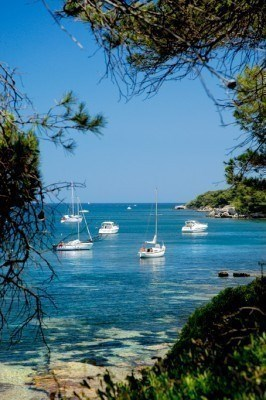Location vacances Cannes -  Appartement - 6 personnes - Climatisation - Photo N° 1