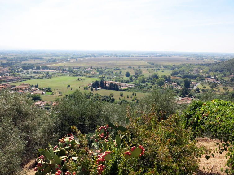 Location vacances San Giuliano Terme -  Maison - 6 personnes -  - Photo N° 1