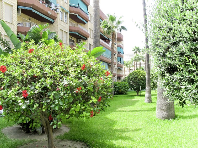 Location vacances Motril -  Appartement - 6 personnes -  - Photo N° 1
