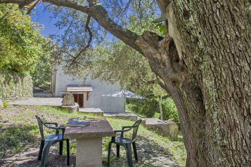 Holiday rentals Pietracorbara - House - 3 persons - BBQ - Photo N° 1